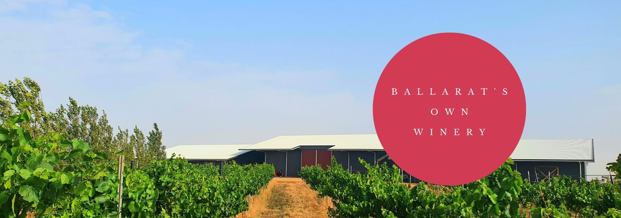 Ballarat's own winery